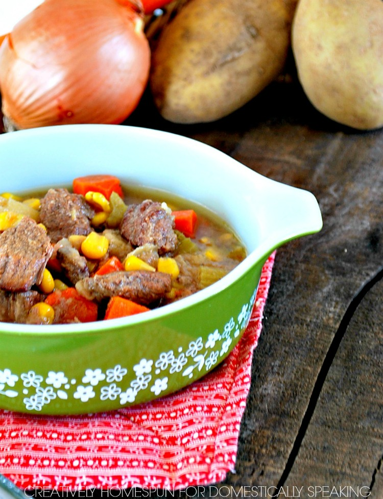 Crock Pot Soup - Beef Vegetable Soup perfect for winter